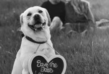 Fern & Jack Pre Wed (10)