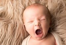 Baby Niko (3)